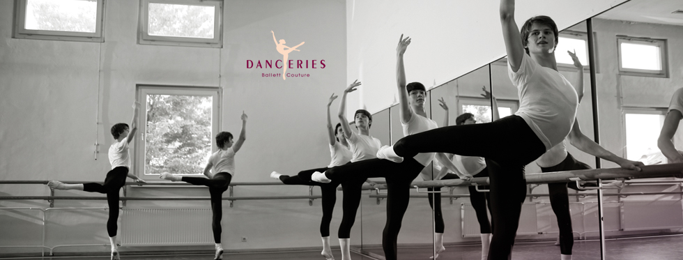 Welcome to DANCERIES